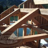 Axis1_trusses