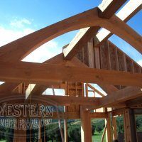 Axis2_trusses