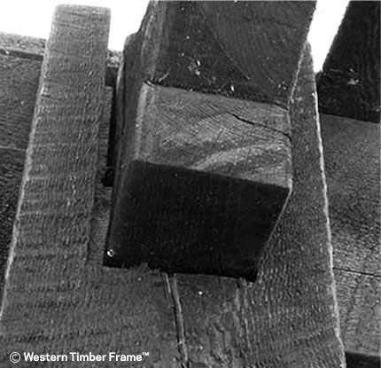 conventional traditional dovetail crack
