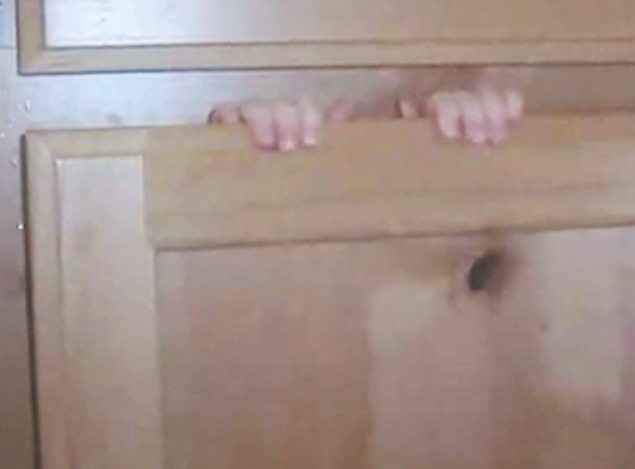 cupboard door shut hands