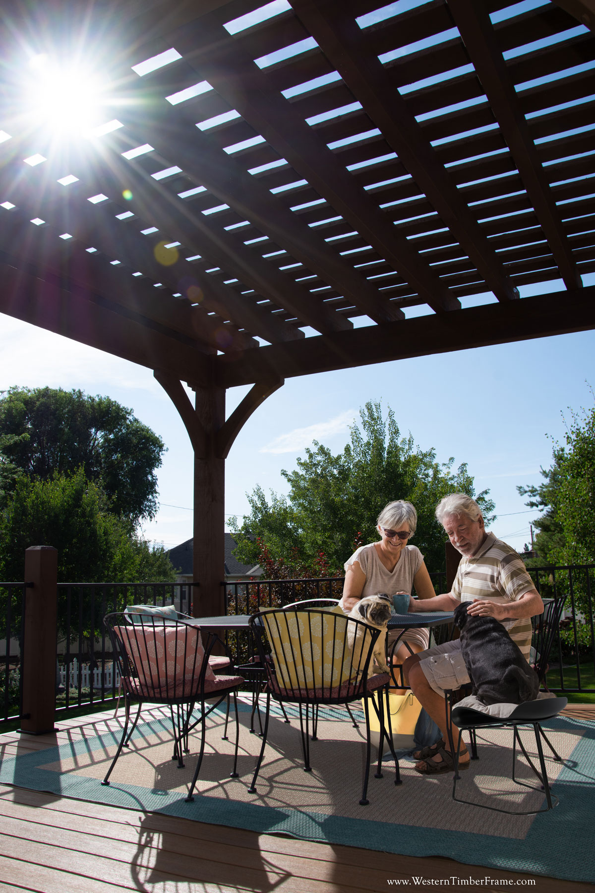 couple sunlight pergola dogs shade